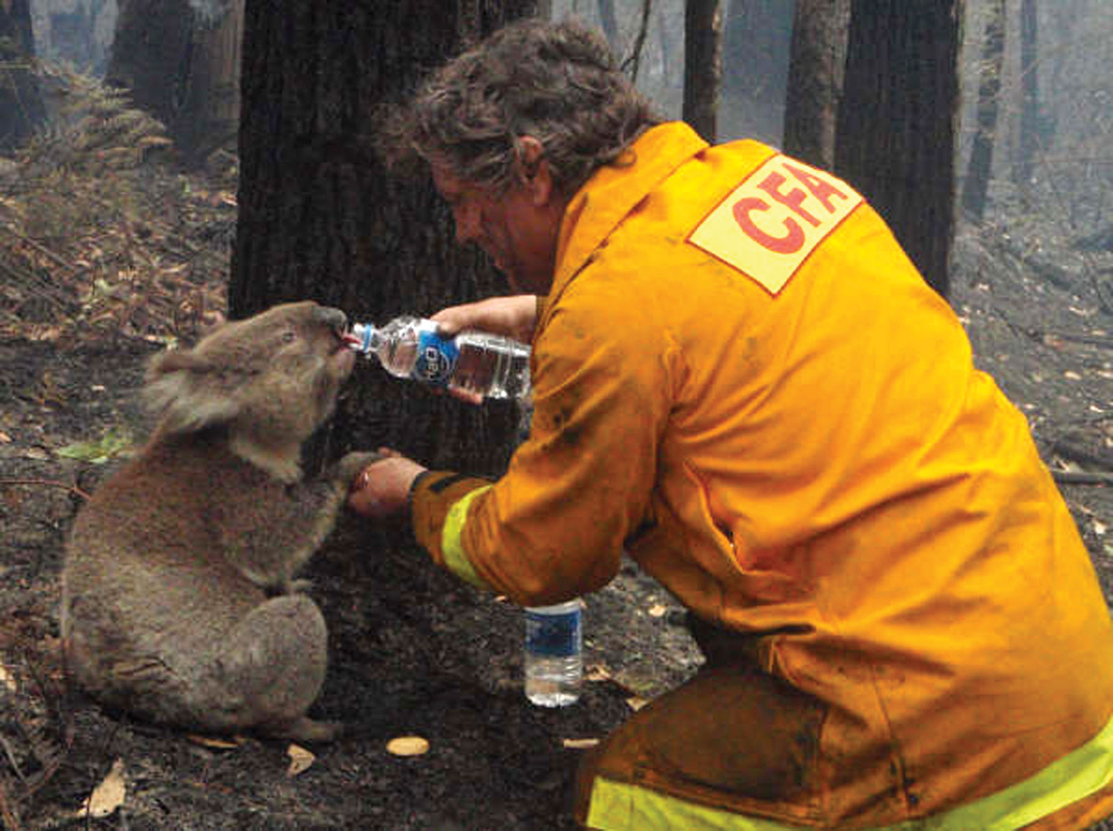 Australia is on Fire and Our Hearts Are Hurting
