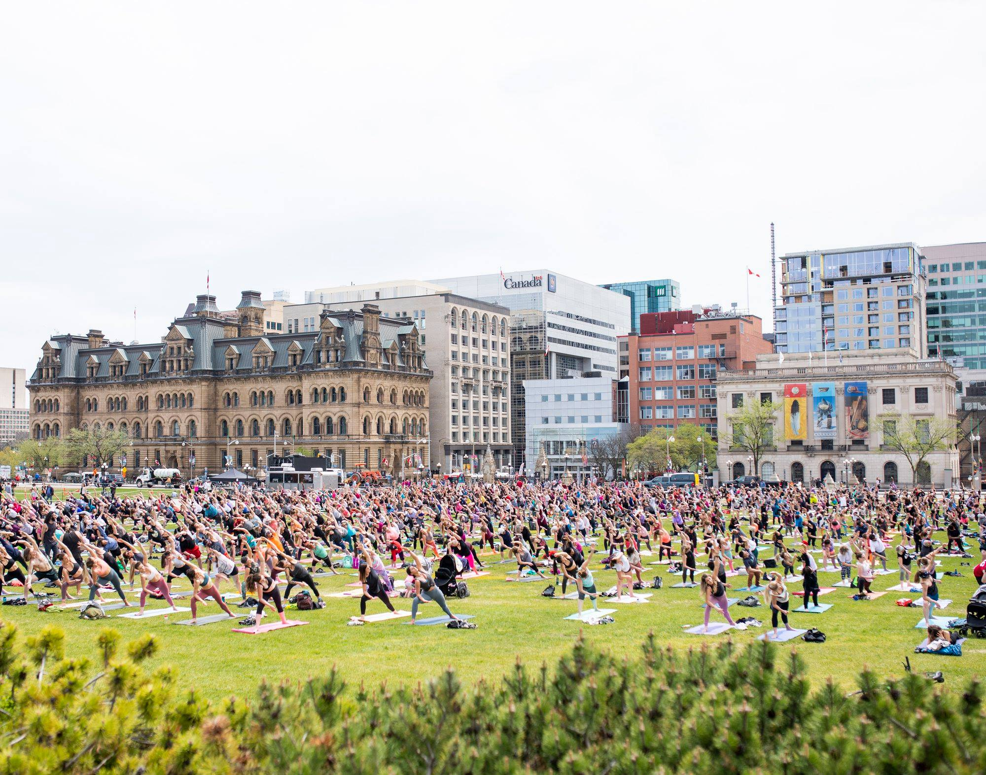 Parliament Hill Yoga - Summer 2019 ☀️