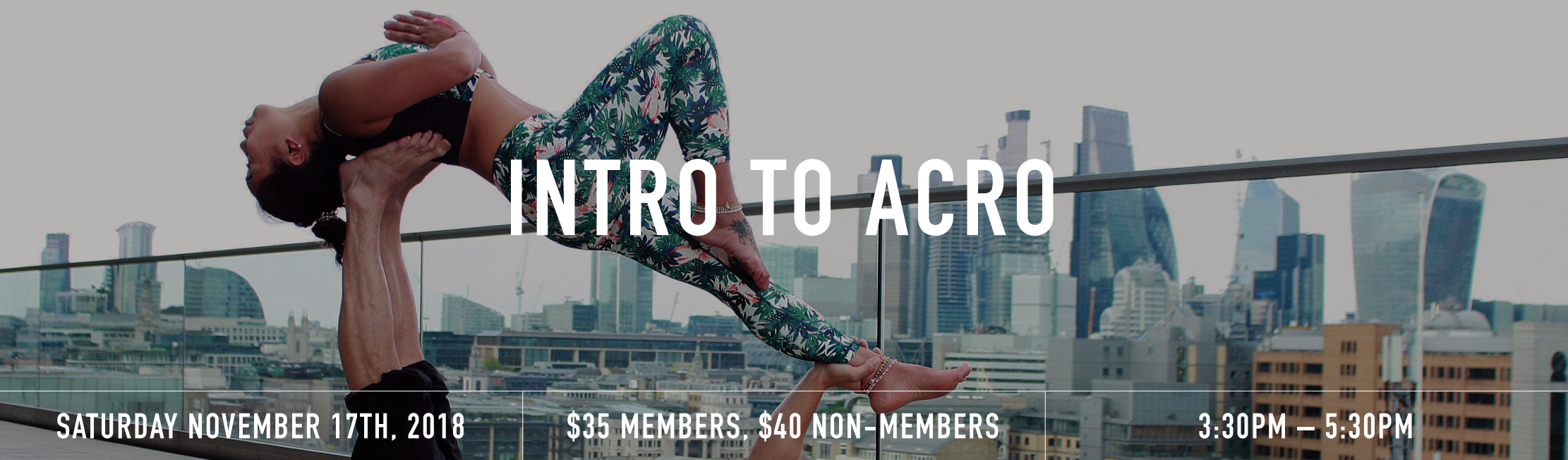 Acro workshop banner