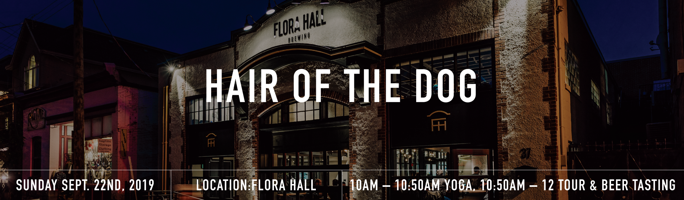Hair of the dog banner  1