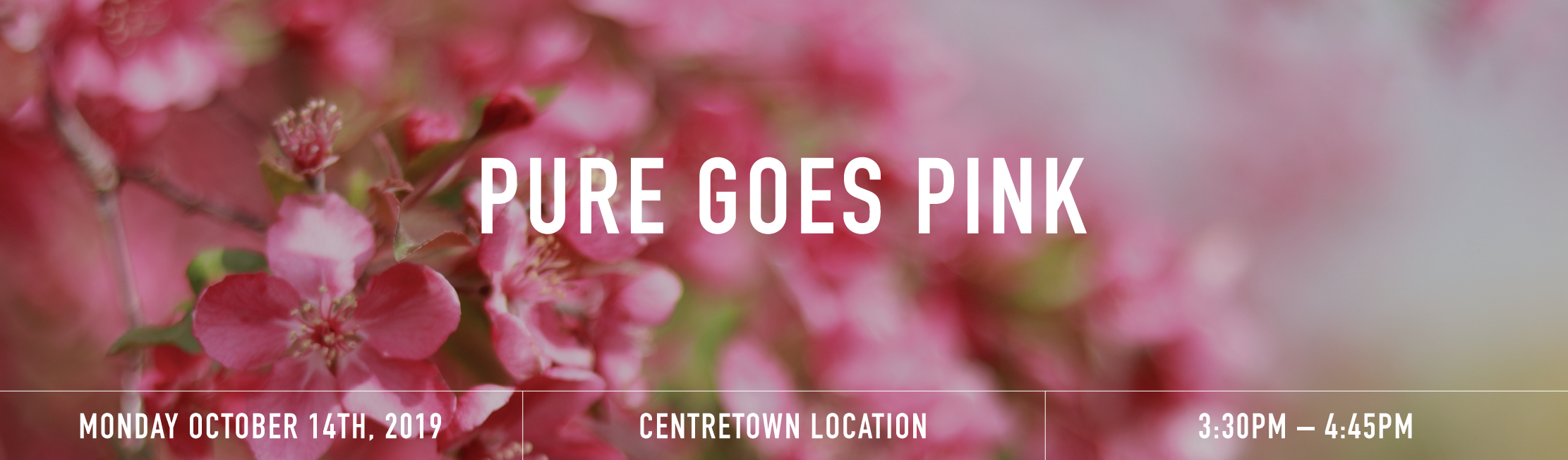 Pure goes pink banner  1